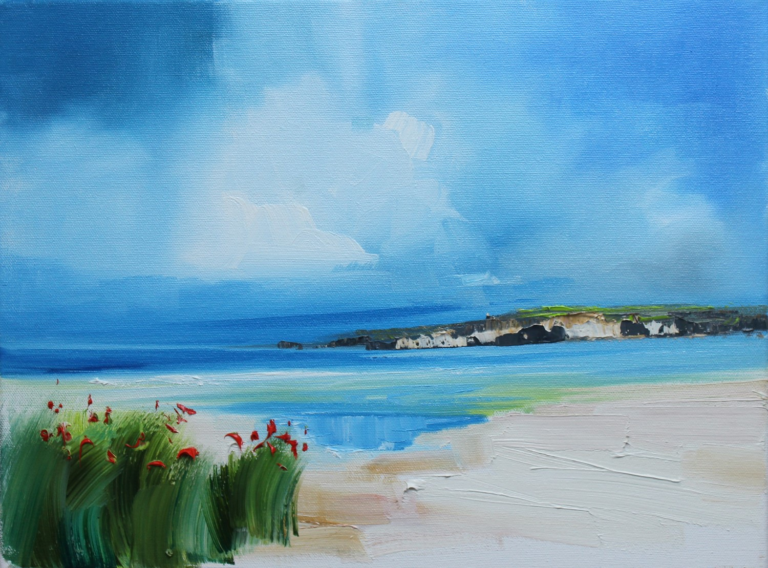'Flowering poppies on sandy shores' by artist Rosanne Barr